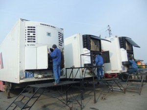 Thermo-King-Carrier-Transicold-service-Lithuania2